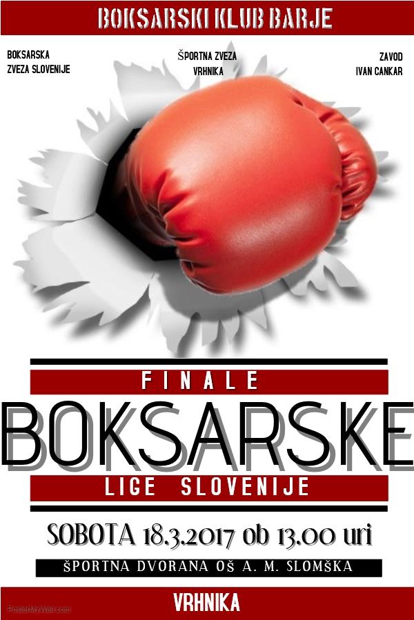 Finale boksarske lige